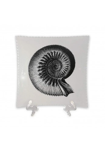 DecorShore Designs Decorative Tray with Display Stand with Nautilus Shell in Black & White Tray with Glossy Finish